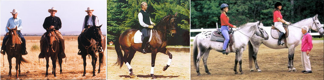On the left, Ray Hunt sits horseback between his friends, mentors, and colleagues Tom Dorrance (left) and Bill Dorrance (right). Photo by Heather Hafleigh, from rayhunt.com. In the center panel, Paul Belasik rides a classical piaffe. From the website paulbelasik.com. Right panel shows Sally Swift teaching students riding in both English and Western disciplines. From the Centered Riding website. Each trainer has written about the importance of feel and its relationship to a deep understanding of how a horse moves.