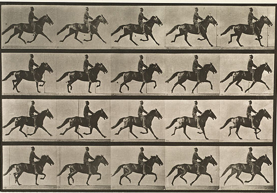 muybridge pace sequence